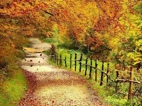 Desktop Wallpaper Beautiful Autumn Scenery Wallpapers