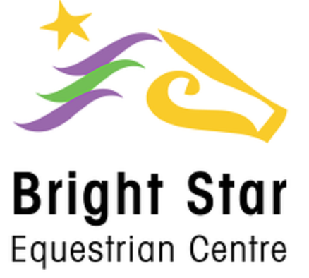 وظائف شاغرة فى سنتر Bright Star International Academy فى مصر 2019