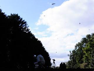 小型鳥獣対策機の遠距離発射実験