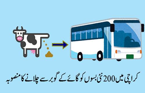 green-buses-karachi
