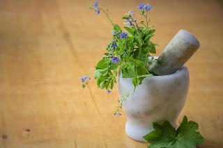 biegunka leczenie zioła