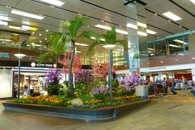 Lotnisko w Singapurze