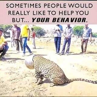 leopard skin cannot change