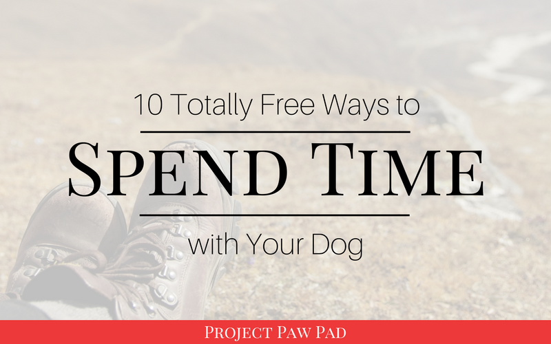 10 Free Activities to Do with Your Dog   Project Paw Pad   save money, free activities, on a budget, spend time with dogs, dog activities, dog exercise, free things to do with dog #dogactivities #todowithdogs #dogsonabudget