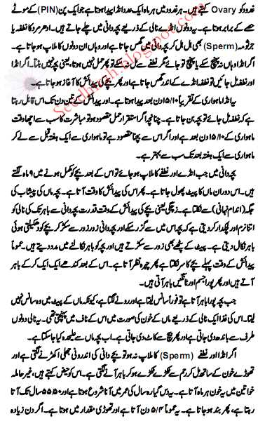 Hamal Aur Veladat [Pregnancy Process]
