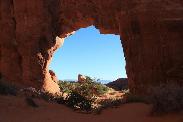 Pine Tree Arch photo