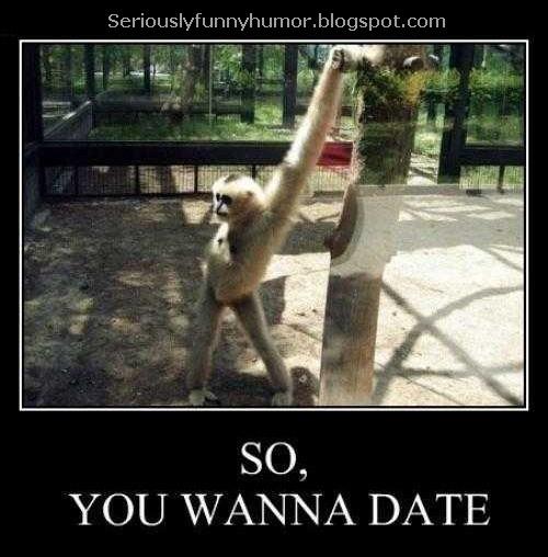 Monkey Flirt - So, you wanna date ;)