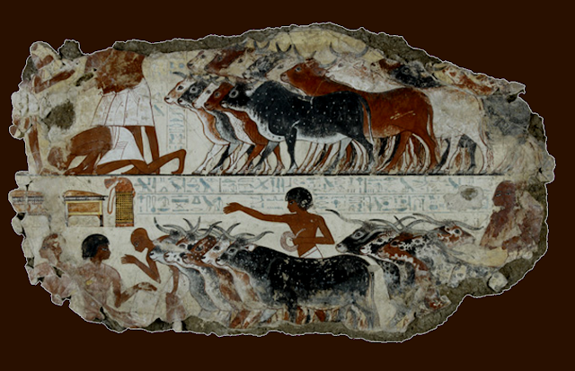 Fragment Of A Wall Painting From The Tomb Of Nebamun Nebamun s cattle    Fragment Of A Wall Painting From The Tomb Of Nebamun