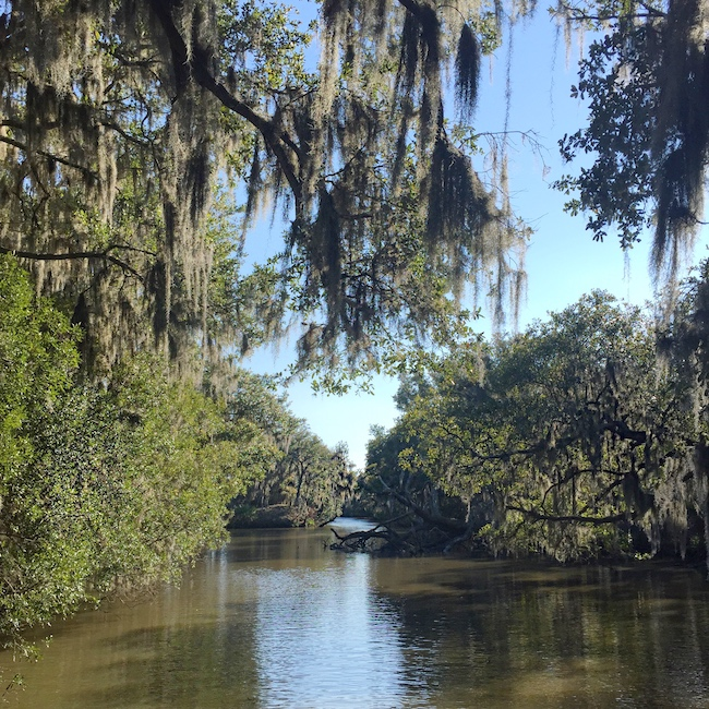 Airboat Tours New Orleans >> The Ultimate New Orleans Travel Guide - Jasmine Maria