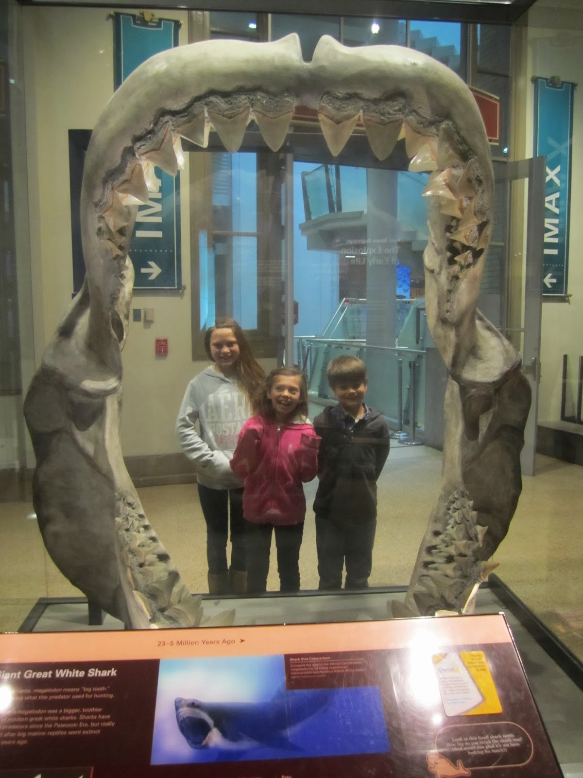DC natural history museum, shark teeth, kids smiling