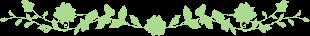 Barras nutritivas de avena o amaranto