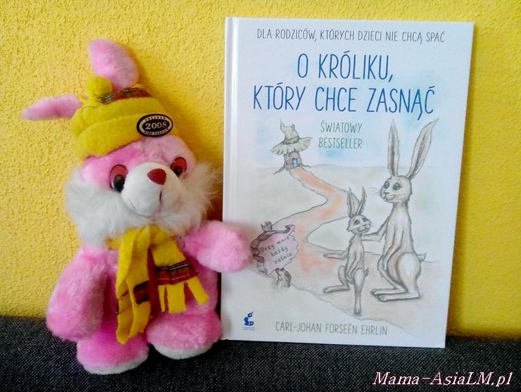 O króliku, który chce zasnąć - książka dla rodziców, których dzieci nie chcą spać
