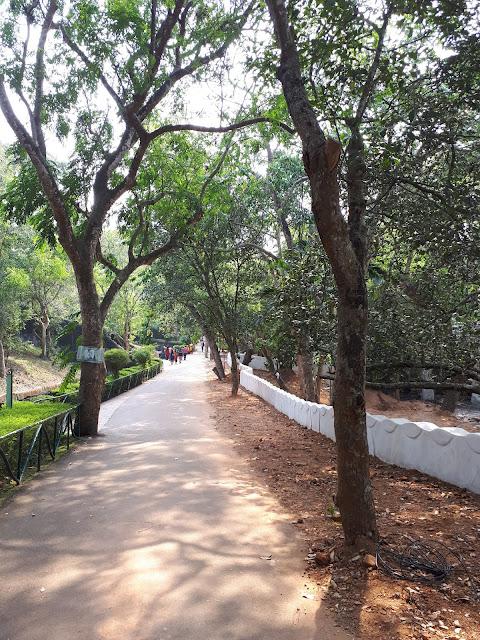 Allée au zoo de Thiruvananthapuram