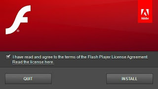 Flash Player Plug-in screenshot