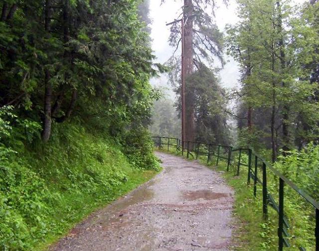 Ayubia Track