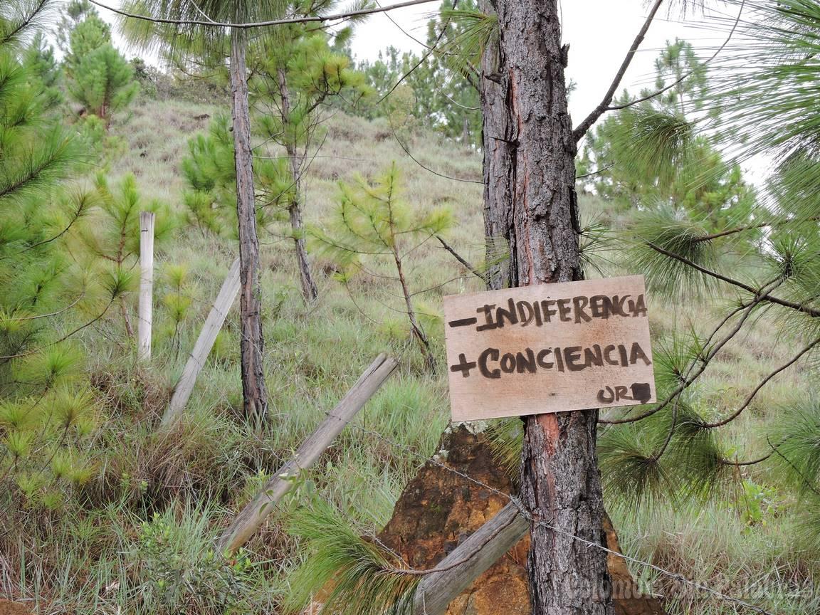 cartel para tomar conciencia