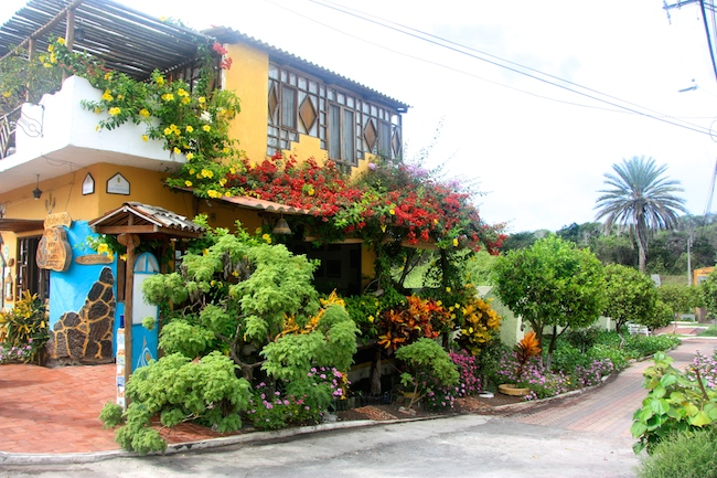 Floral coffee shop in Galapagos