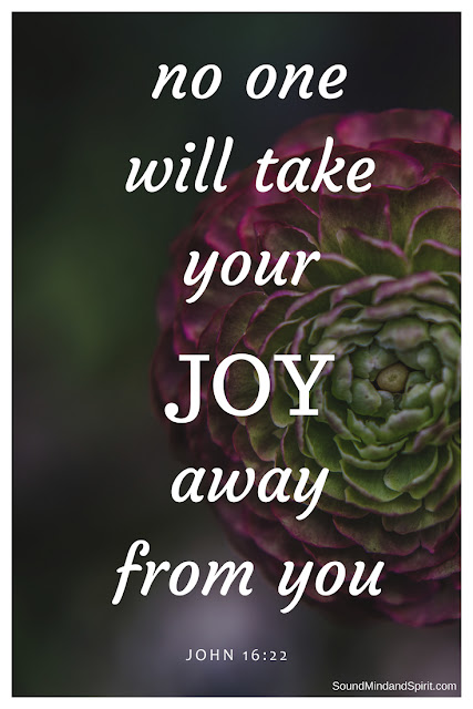 Noone will take your joy away from you ~ John 16:22