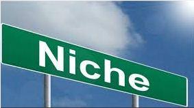 pengertian niche blog