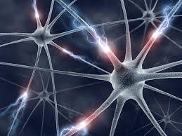 ¿Cómo afecta el tabaco a su sistema nervioso?