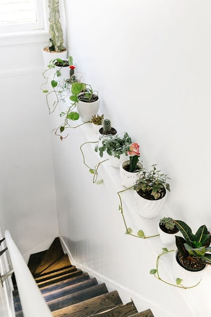 Ideas To Decorate Interiors With Plants 4