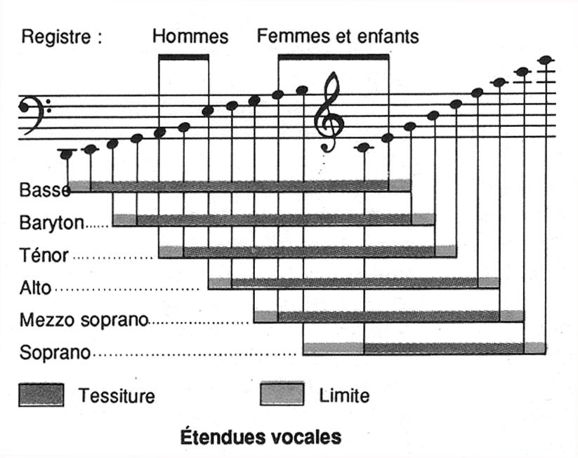 classification des voix. Black Bedroom Furniture Sets. Home Design Ideas