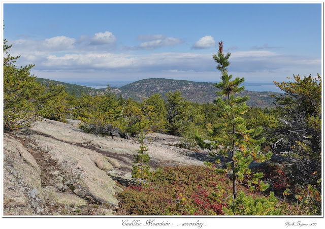 Cadillac Mountain: ... ascending...