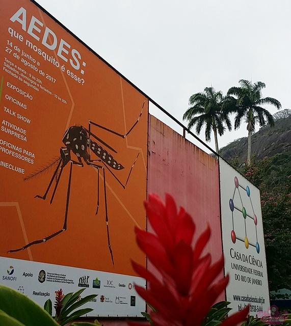 Exposição Aedes na Casa da Ciência