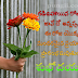 Telugu Quotes With Telugu Good Morning Imags HD