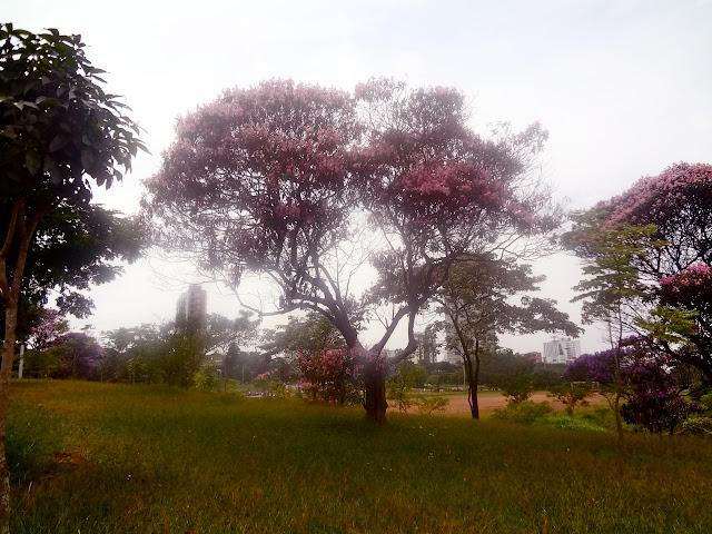Parque CERET