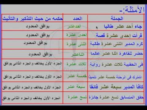 درس العدد تذكيره وتأنيثه لمادة اللغة العربية