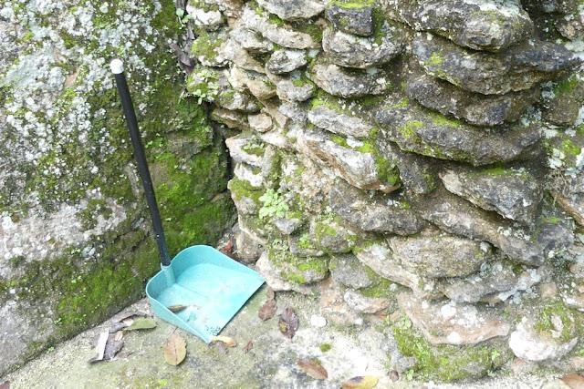 Maya-Ruine Kohunlich