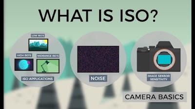 ISO máy ảnh là gì, cách chỉnh iso trong máy ảnh kỹ thuật số