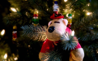 cristmas-teddybear-wallpapers-images