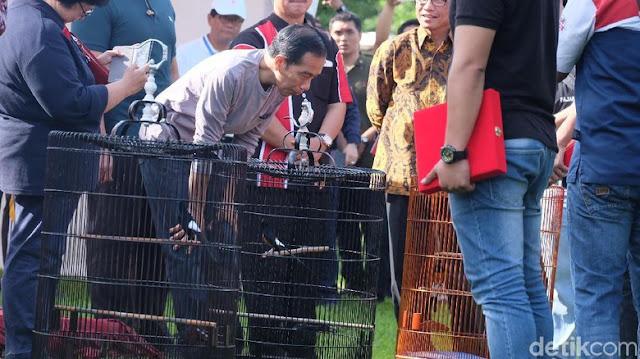Presiden Jokowi melihat dari dekat burung-burung dalam sangkar.