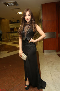Angela Krislinzki in Transparent Black Gown at Rogue Movie Teaser Launch 1st March 2017 108.JPG
