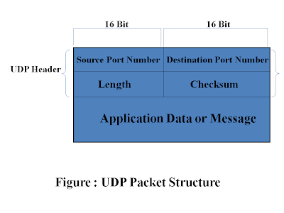 user datagram protocol(UDP) Packet