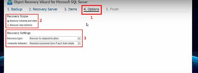NAKIVO Backup & Replication v7.2: Recuperar de forma instantánea objetos de nuestro servidor Microsoft SQL .