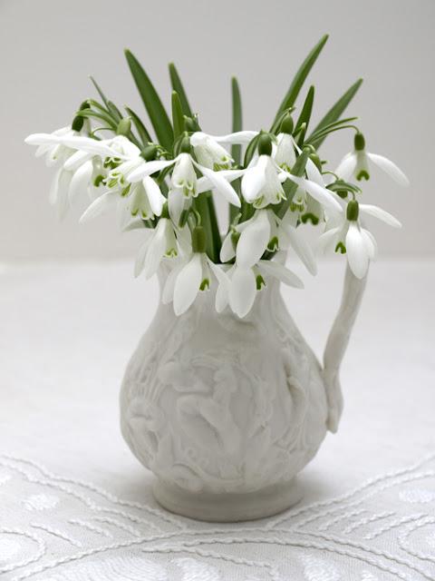 Snowdrops in vintage white jug