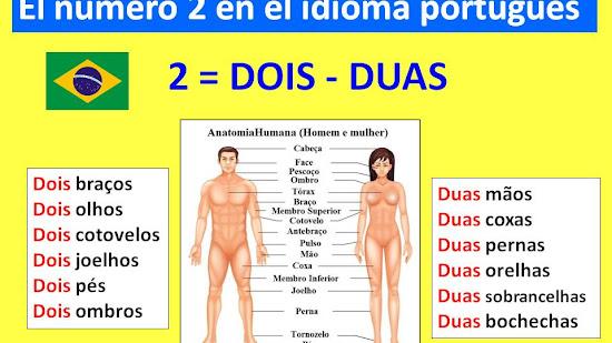 """No digas """"Dois pernas"""". En portugués, el número """"2"""" tiene género."""