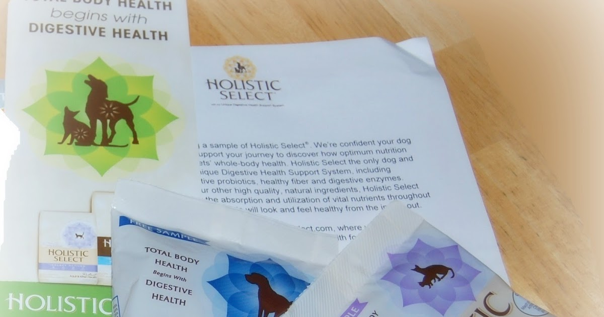 Holistic Select Cat Food Where To Buy
