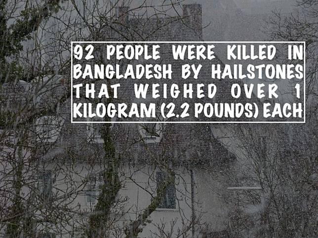 Deretan Bencana Alam Teraneh yang Pernah Terjadi