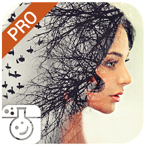 Photo Lab PRO Picture Editor: effects, blur & art v3.6.16 [PATCHED]