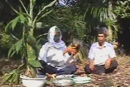 Badewo Bonai Rokan Hulu - Warisan Budaya Tak Benda Riau