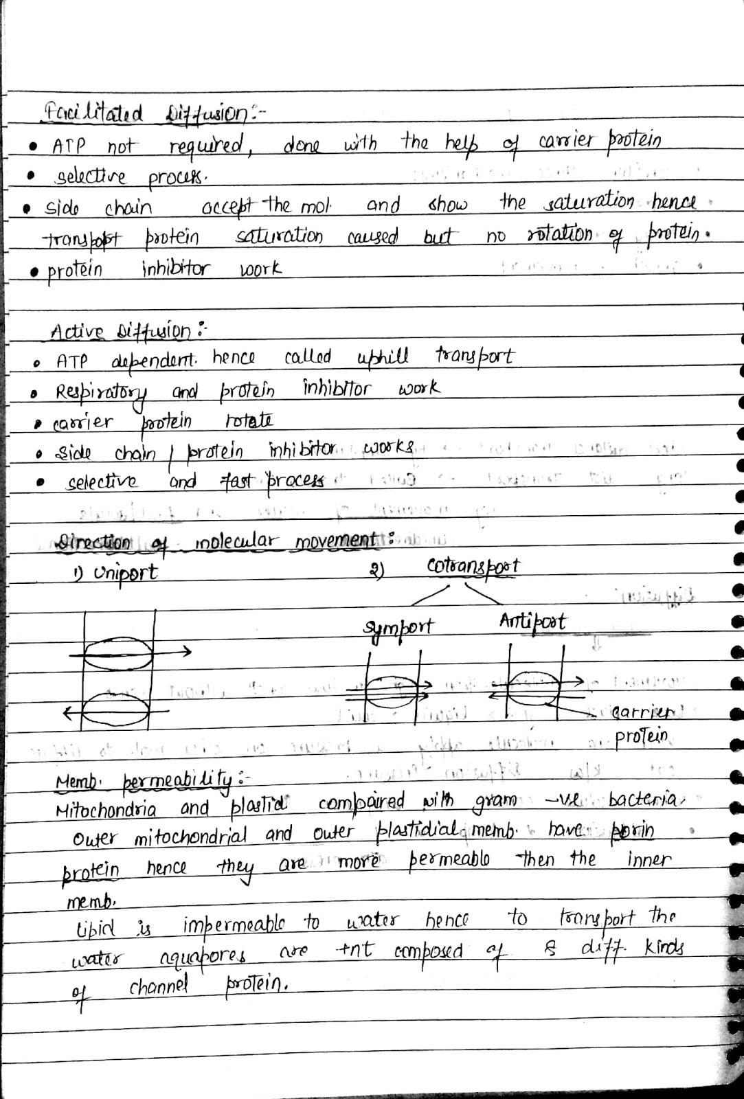 06 Plant transport - Biology Notes for IGCSE