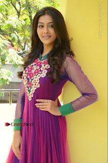Actress Pooja Jhaveri Latest Stills in Purple Salwar Kameezt at Dwaraka Success Meet  0130.JPG