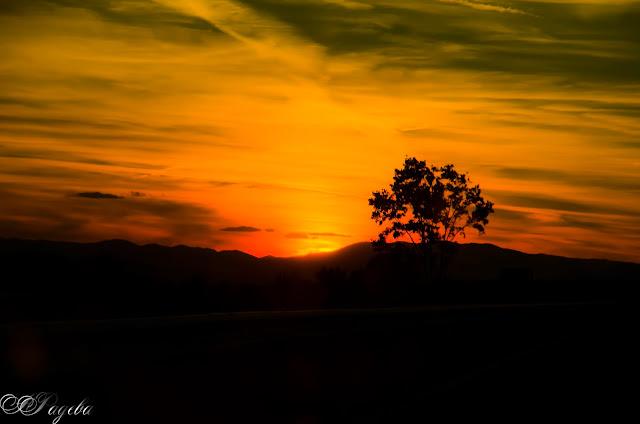 Самота-по-време-на-залез,-Loneliness-at-sunset