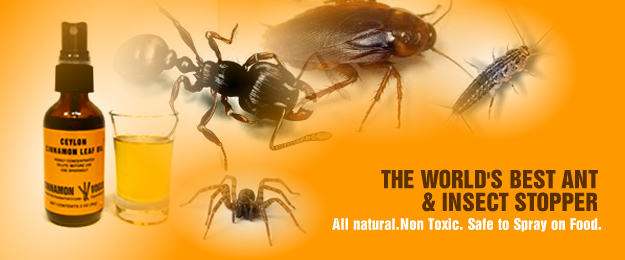Non Toxic Way To Get Rid Of Fire Ants Best Pesticide To