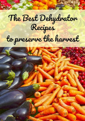 dehydrating fruit and vegetables