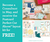 NEW CONSULTANT KIT